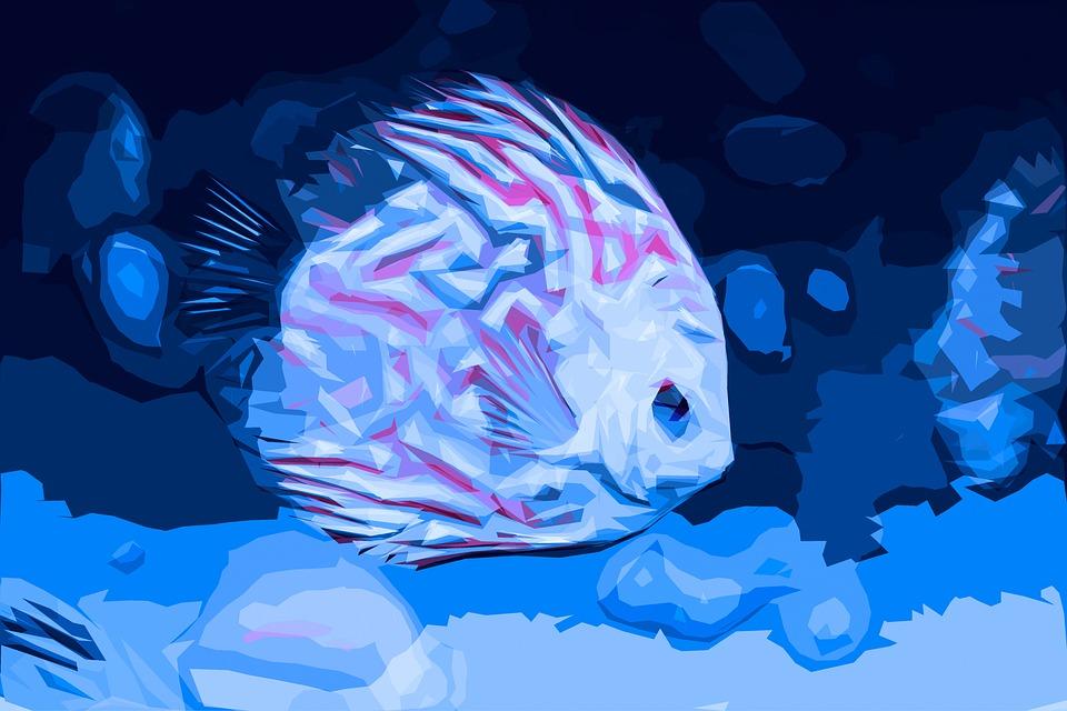 aquarium kies blau